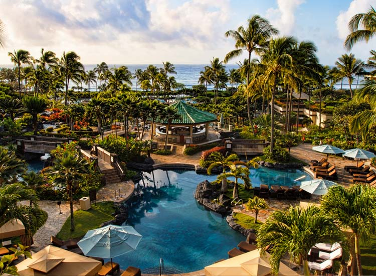 Guests Love The Grand Hyatt Kauai S Pool So Much That They Re Willing