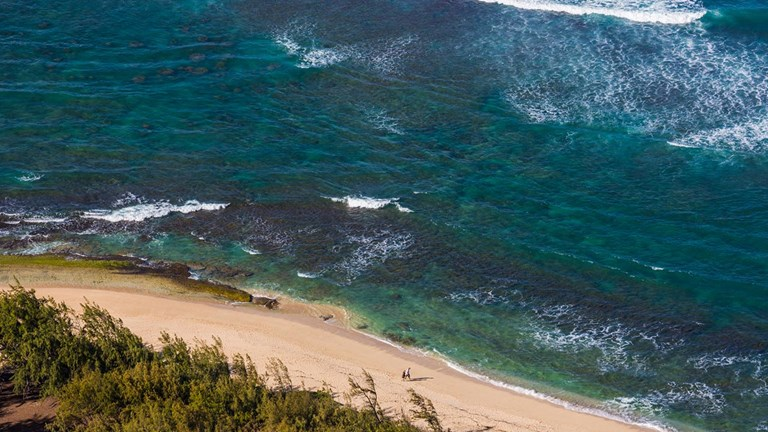 As more clients look for a rural vacation spot, Oahu's North Shore has become a top pick.