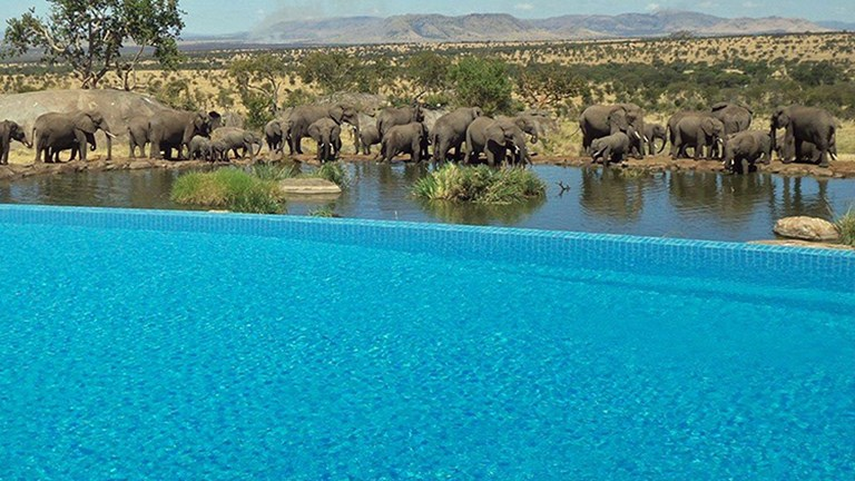 Jaw-Dropping Hotel Pools 10