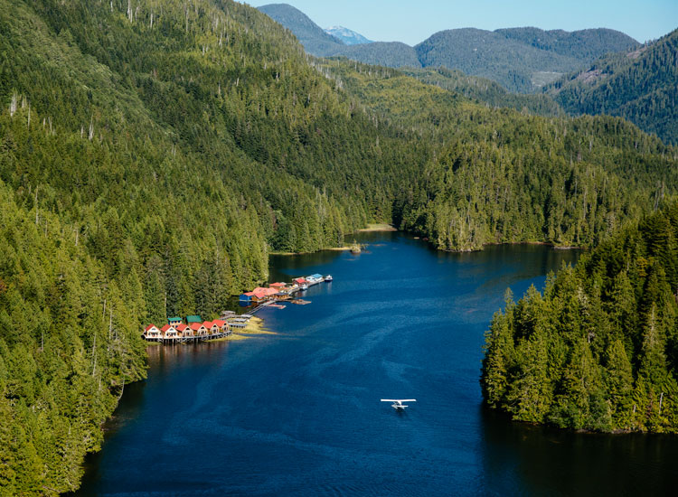 Nimmo Bay is located in the middle of British Columbia's Great Bear Rainforest. // © 2017 Nimmo Bay Resort
