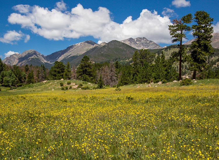 Visitors to Rocky Mountain National Park can enjoy sweeping vistas of the Mummy Range. // © 2017 Rocky Mountain National Park
