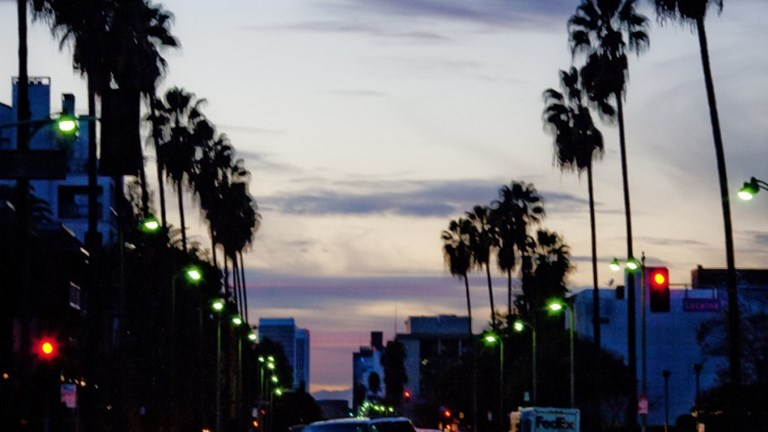 Lined with LA's iconic palm trees, Wilshire Boulevard is alive with sightseeing, dining and entertainment at any time of day. // © 2014 Creative Commons user thomashawk