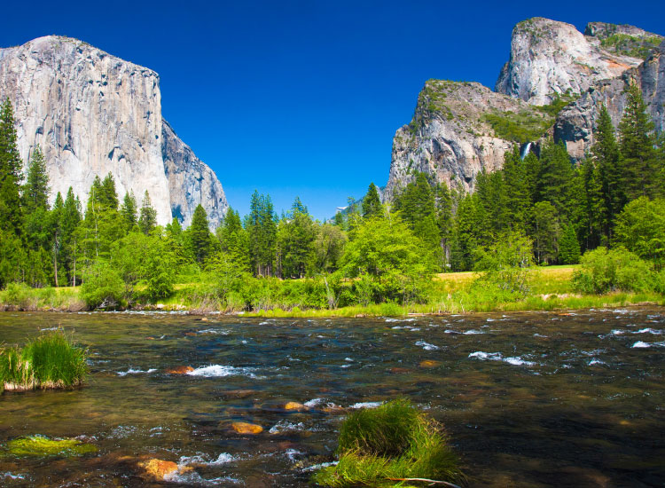 Yosemite National Park, which encompasses nearly 1,200 square miles, was first protected in 1864 and designated a national park in 1890. // © 2016 Insight Vacations