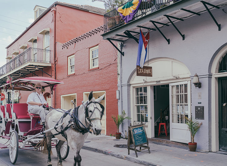 Sit back and discover the city on a horse and carriage tour. // © 2018 Paul Broussard