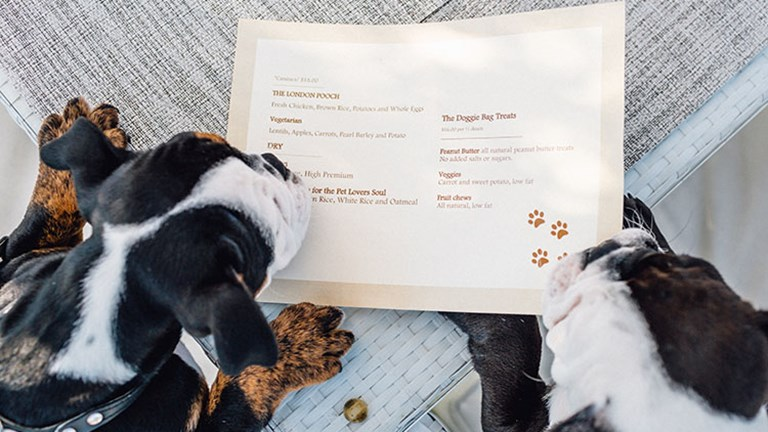 The hotel's executive chef also created a special menu for visiting dogs that includes vegetarian, low-fat and all-natural options. // © 2017 The London West Hollywood at Beverly Hills