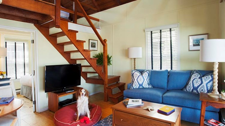 Dogs and dog lovers can stay at The Cottages at Nantucket Boat Basin's Woof Cottages, which are pet-friendly and full of fantastic amenities. // © 2017 The Cottages at Nantucket Boat Basin