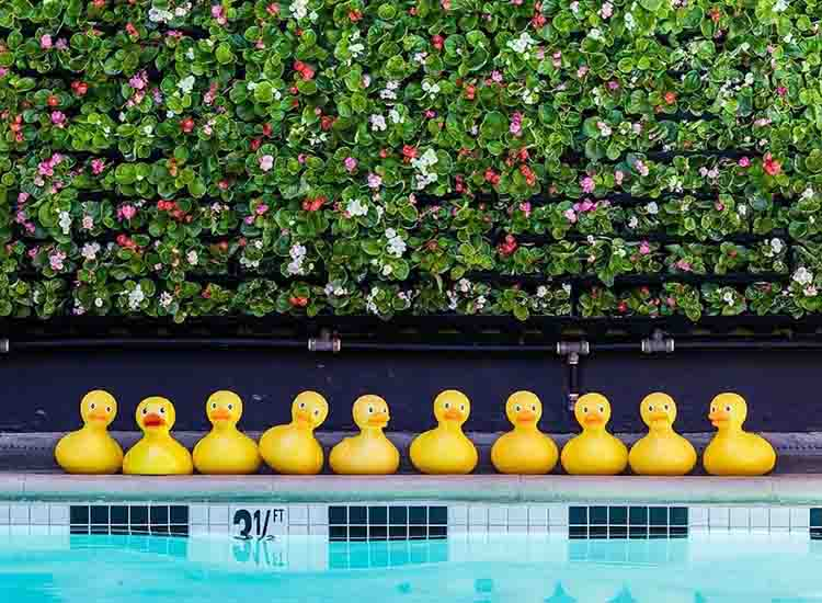 Quirky touches by the pool include rubber ducks and a pingpong table. // © 2017 Farmer's Daughter Hotel