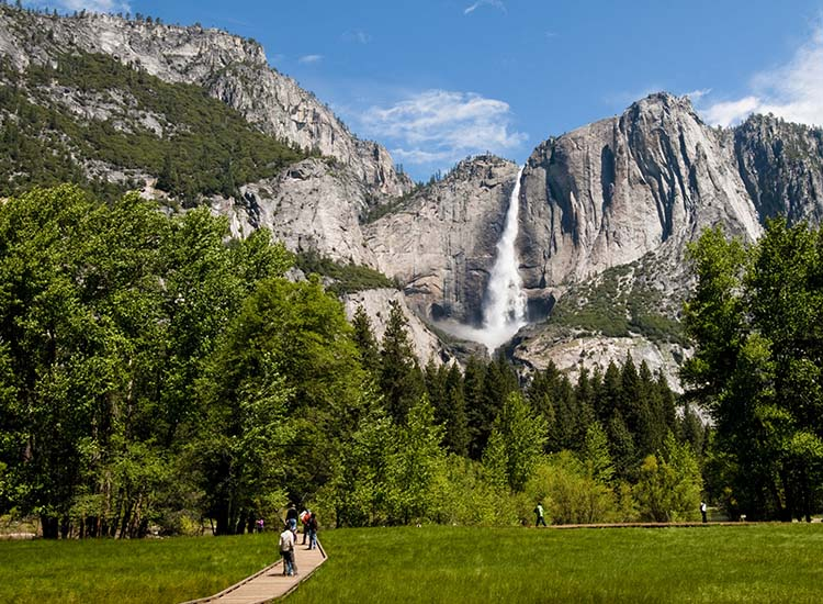Hikers can visit the waterfall up close by taking the loop trail by Lower Yosemite Fall. // © 2016 iStock
