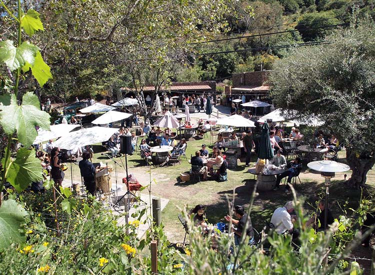 Malibu Wines Tasting Room fills up with visitors on weekends. // © 2017 Creative Commons user tomorrowgirl