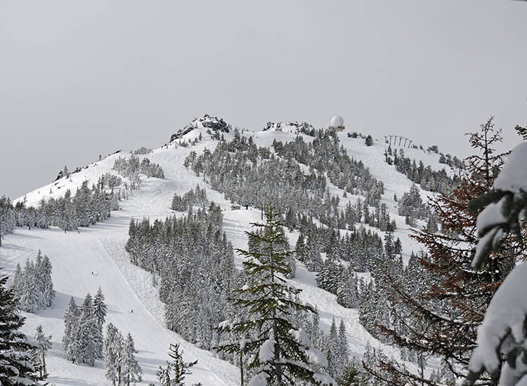 Mt. Ashland is southern Oregon's skiing destination and offers twilight skiing with lighted runs. // © 2017 Creative Commons user forestservicenw