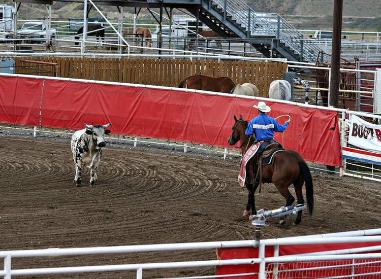 Clients who love Wild West culture will want to explore the city of Cody, Wyo., for old-fashioned American fun, including Cody Nite Rodeo. // © 2015 Creative Commons user snerkology