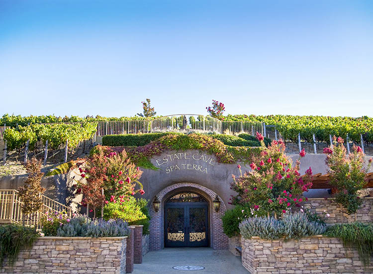 Below the vineyard is the 22,000-square-foot Estate Cave, which also houses the underground Spa Terra. // © 2017 The Meritage Resort and Spa
