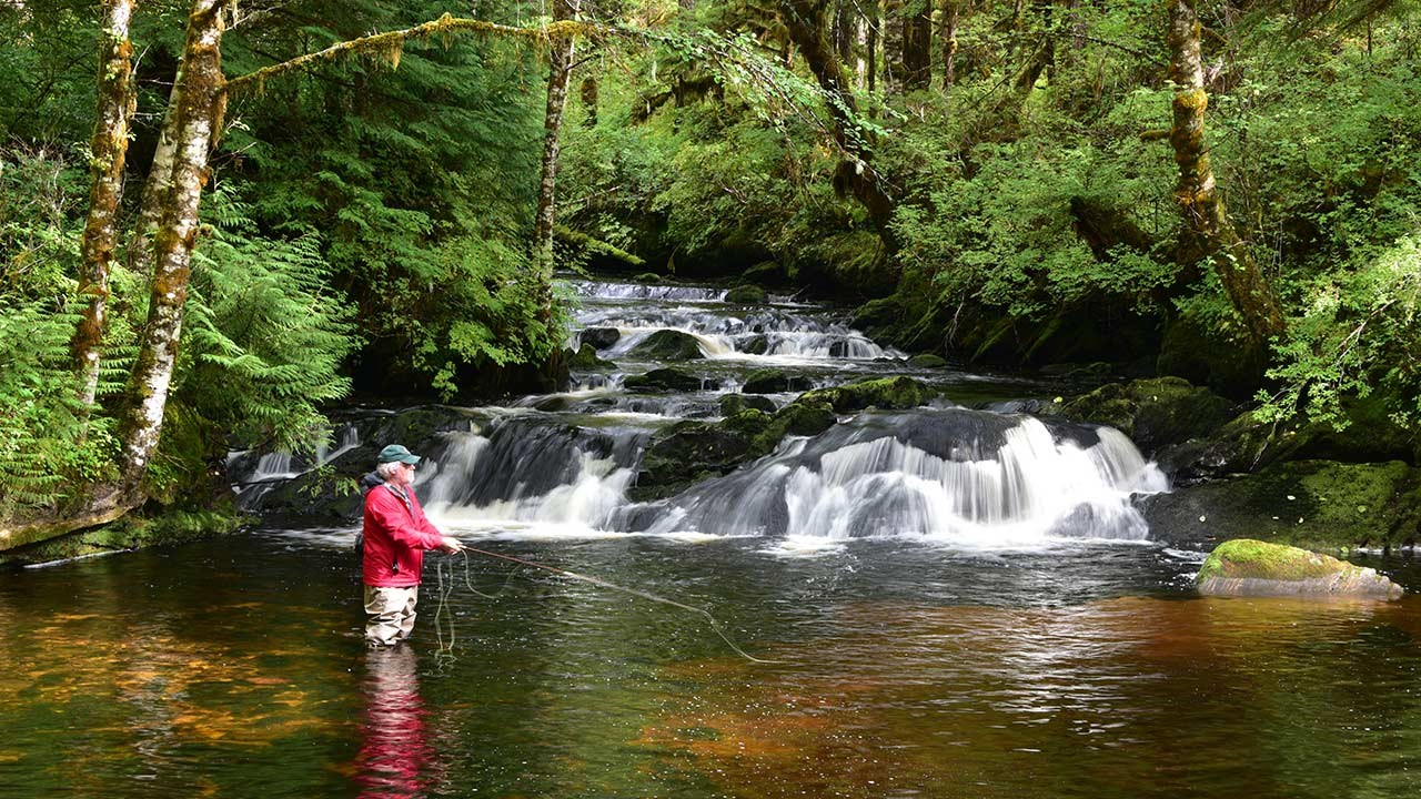 Visitors can try fly-fishing on a tributary of Lunch Creek.