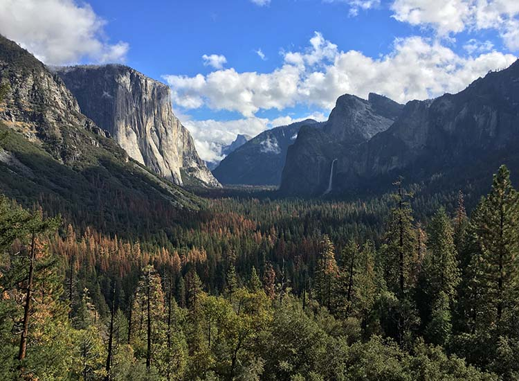 A day trip from the lodge to Yosemite National Park is a must — and it's a cinch, since the lodge is located just under 3 miles from the entrance to the park. // © 2016 Michelle Juergen