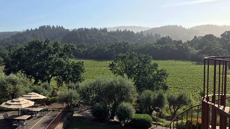 Some guestrooms look out into nearby vineyards, including those of Duckhorn Vineyards, Freemark Abbey and Hourglass Winery. // © 2017 Valerie Chen