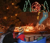 Zoo Lights at the Denver Zoo // © Denver Zoo