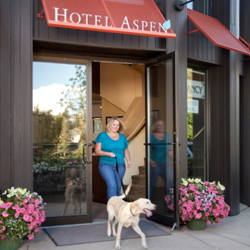 The Hotel Aspen is pet-friendly. // © 2013 Hotel Aspen