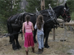 Young guests meet the locals at the Idaho Rocky Mountain Ranch // (c) Idaho Rocky Mountain Ranch