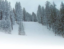 New Mexico's Pajarito Mountain is a popular ski area // (c) 2010 www.skipajarito.com