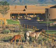 The Tamaya Horse Rehabilitation Meeting Experience is a new offer for groups at the Hyatt Regency Tamaya. // (c) 2012 Hyatt Regency Tamaya Resort...
