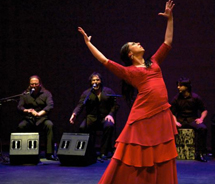 Festival Flamenco is the largest exposition of flamenco dance and music in the U.S. // © 2012 National Institute of Flamenco