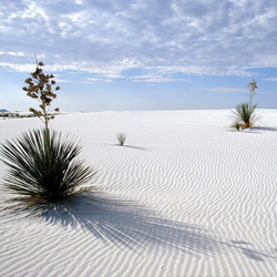 Explore White Sands National Monument and other attractions in the Las Cruces area for a chance to win an iPad. // © Las Cruces Convention &...