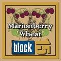 Block Berry 15 is brewing up fruit-infused ales // (c) 2009