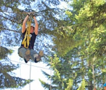 Zipline tours offer treetop adventures // (c) 2010 Tree to Tree Adventure Park