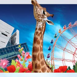 The Dallas Zoo and Summer Adventures in Fair Park are participating attractions.  // © 2013 Dallas Convention & Visitors Bureau