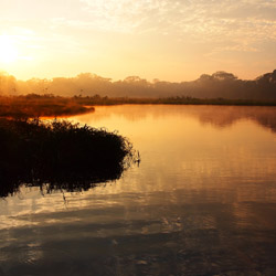 <p>Save on a cruise along the Amazon River. // © 2016 iStock</p><div></div>