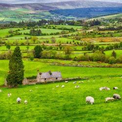 <p>Book a trip to Ireland and earn $100 with Collette. // © 2016 iStock</p><div></div>