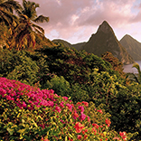 Several local hotels are participating in Saint Lucia's Agent Months Promotion. // © 2015 iStock