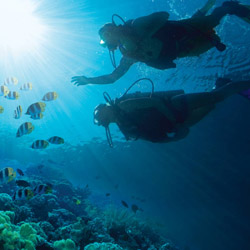 Scuba diving excursions are part of Sandals Emerald Bay's all-inclusive offerings. // © Sandals Resorts 2014