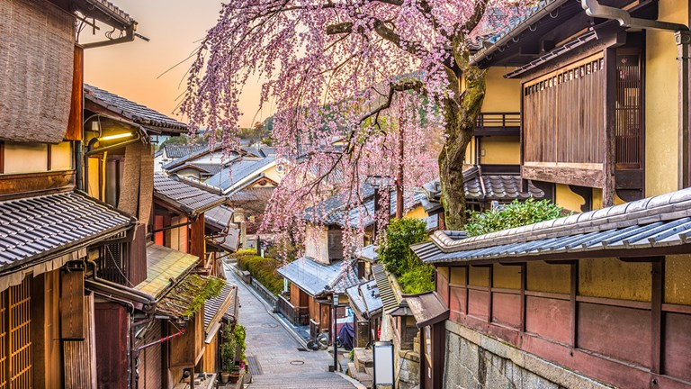 Avanti recently expanded into Asia, with customizable journeys in several destinations, including Kyoto, Japan.