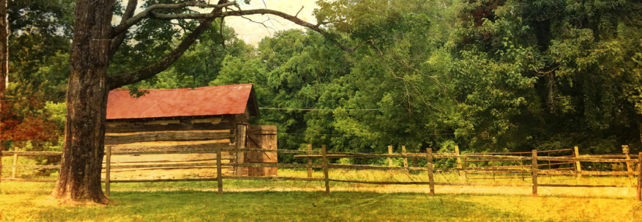 Family Vacation Journal: Andrew Jackson's Hermitage