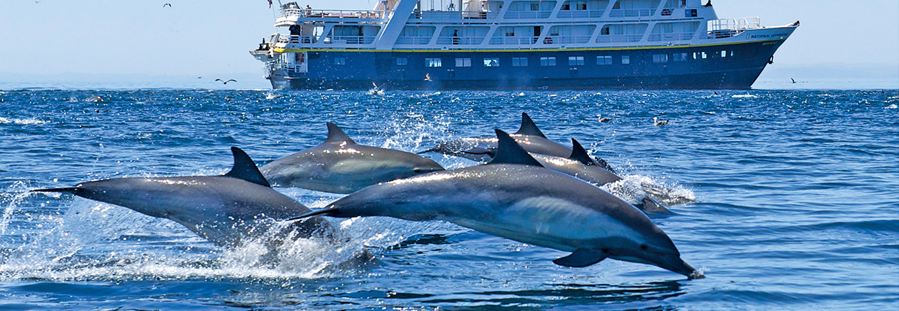 Bring the Kids on This Sea of Cortez Expedition Cruise