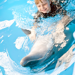 <p>Cancun's Dolphin Discovery Program lets guests swim with dolphins. // © 2015 iStock</p><p>Feature image (above): Kids can visit scaly creatures at...