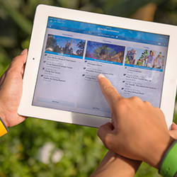 <p>Information about attractions, show times, dining and more is easier than ever to explore and access thanks to the My Disney Experience mobile app....