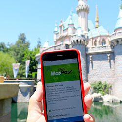 <p>Disney MaxPass can be purchased through the Disneyland app. // © 2017 Samantha Davis-Friedman</p><p>Feature image (above): Disney MaxPass offers...