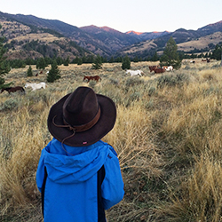 <p>The first-ever summit of the Family Travel Association took place at Mountain Sky Guest Ranch Resort in Emigrant, Mont. // © 2015 Mindy...
