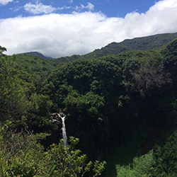 <p>View the striking waterfalls of Pipiwai Trail just 20 minutes past Hana. // © 2016 Lindsay Kamikawa</p><p>Feature image (above): On the road to...