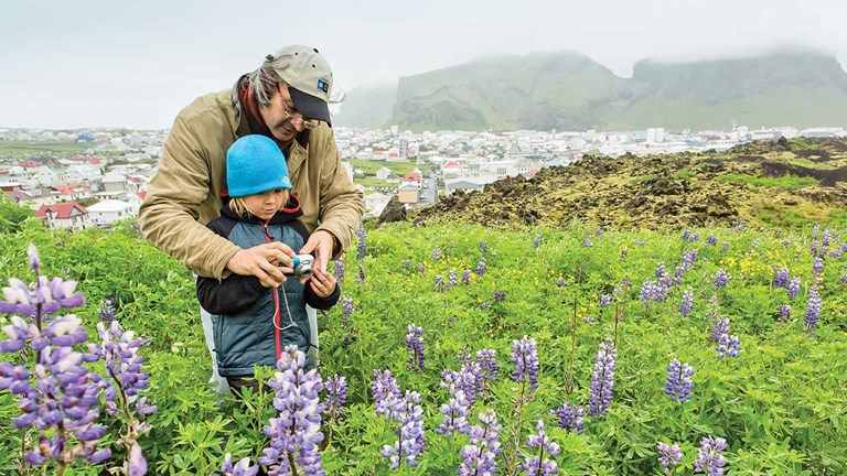 Iceland has grown as a popular destination for families over the past few years.