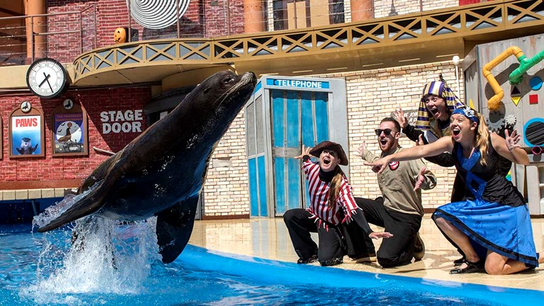 SeaWorld's Halloween-themed sea lion show will thrill guests of all ages.